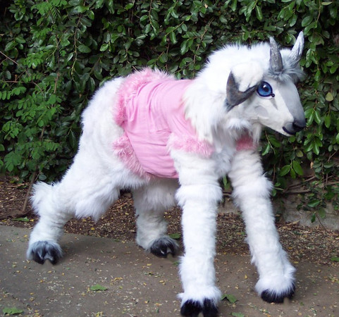 http://weeblackdug.smugmug.com/Other/link-friendly-stuff/i-FD7BqxG/0/M/Quad_Goat_Costume_by_LilleahWest-M.jpg